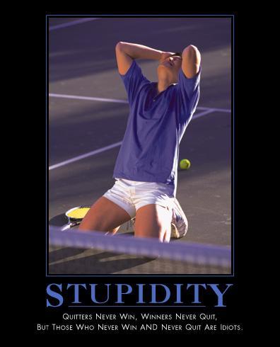 ~Stupidi.jpg (53888 bytes)